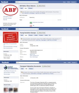 Organisations on Facebook - click to enlarge