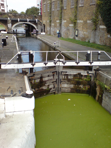 Nearby Grand Union Canal